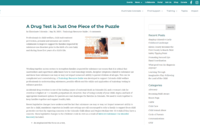 A Drug Test is Just One Piece of the Puzzle